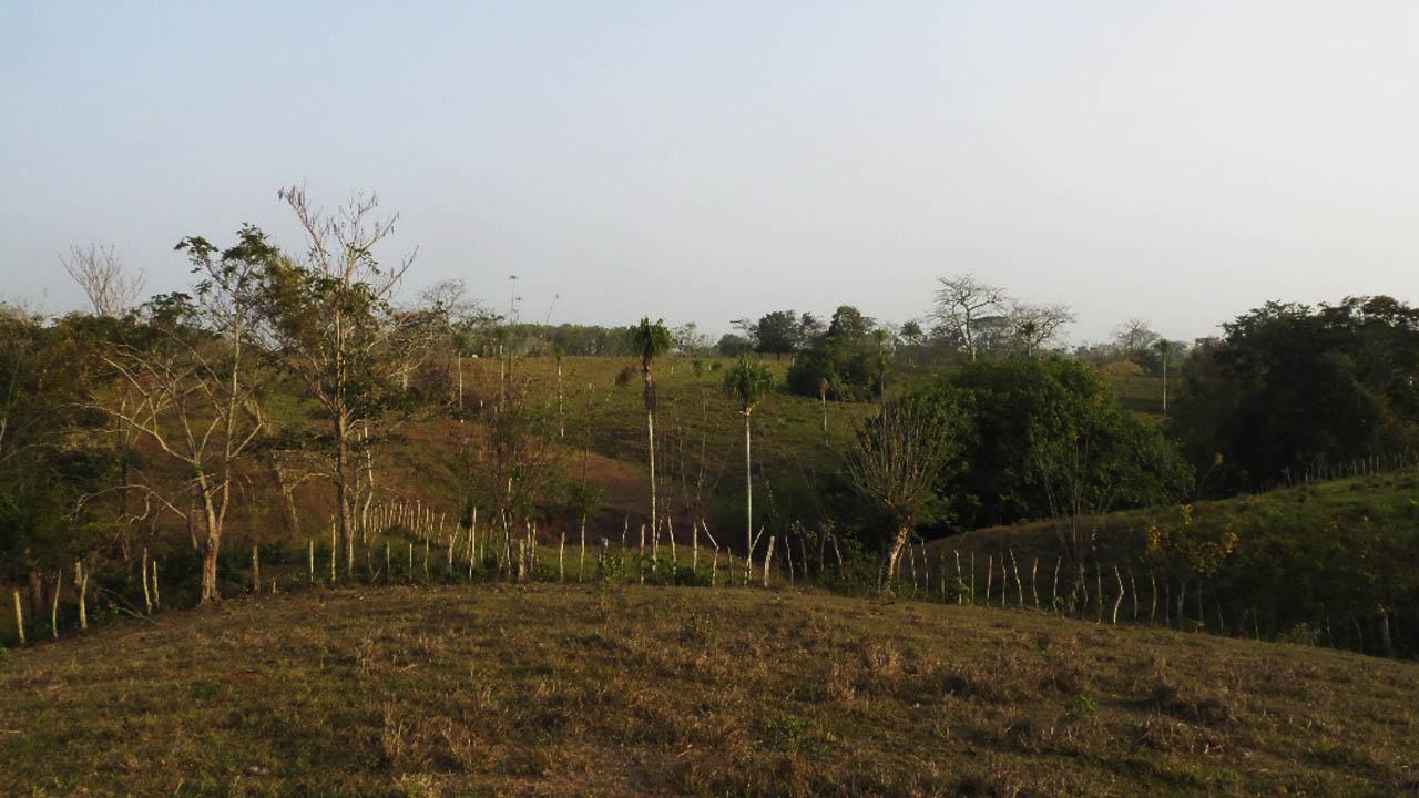 APP Conexión Antioquia - Bolívar
